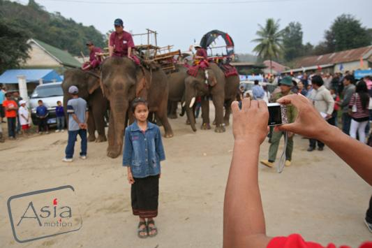Photo story Asia Motion - CS_elephants_Laos20.JPG
