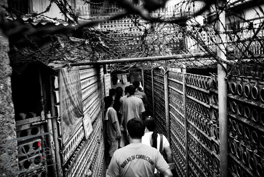 Photo story Asia Motion - _barred freedom__11.jpg